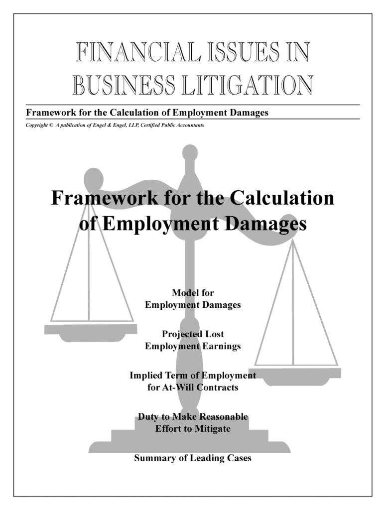 Framework for the Calculation of Employment Damages